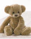 Ano Voice Recordable Teddy Bear